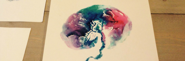 placenta print coloured header 1